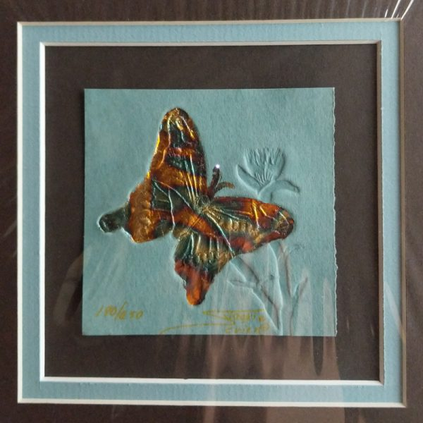 Butterfly Print by Jackie Sevier